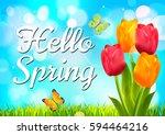 spring. | Shutterstock .eps vector #594464216