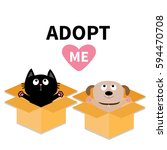 adopt me. dont buy. dog cat... | Shutterstock .eps vector #594470708