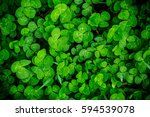 Beautiful Background With Green ...