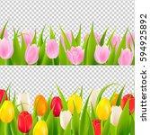 Tulip Border With Transparent...