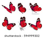 Stock photo beautiful six monarch butterfly isolated on white background 594999302