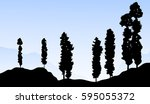 mountain trees at early morning ... | Shutterstock .eps vector #595055372