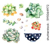 watercolor collection with... | Shutterstock . vector #595064972