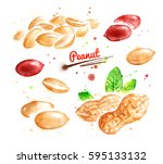 watercolor illustration of... | Shutterstock . vector #595133132