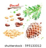 watercolor illustration of pine ... | Shutterstock . vector #595133312