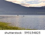Geese Flying Over The Waters O...