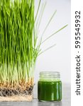 Small photo of Wheatgrass details of the Roots, Seeds, Sprouts and Healthy Juice Shot ready to Drink