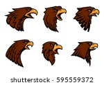 hawk vector icons for sport... | Shutterstock .eps vector #595559372