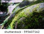 Moss Grow On River Rock. Image...