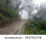 view of road in the jungle ... | Shutterstock . vector #595701578