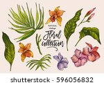summer vector tropical vintage... | Shutterstock .eps vector #596056832