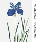 purple hand drawn iris flower...   Shutterstock .eps vector #596120426