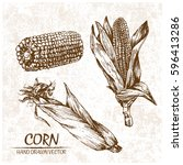 digital vector detailed corn... | Shutterstock .eps vector #596413286