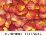 bright rose petals for the... | Shutterstock . vector #596470352