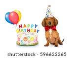 dachshund or sausage  dog ... | Shutterstock . vector #596623265