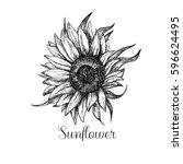 hand drawn vintage sunflower | Shutterstock . vector #596624495