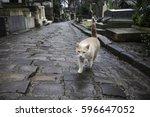 paris  france  february 14 ...   Shutterstock . vector #596647052
