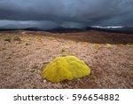 high altiplano plateau  eduardo ... | Shutterstock . vector #596654882