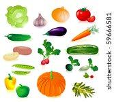 set of raw vegetables   Shutterstock .eps vector #59666581