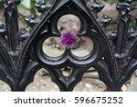 Garden Gate And Flower