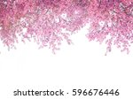 cherry blossom frame use as... | Shutterstock . vector #596676446