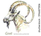 Watercolor Goat On The White...