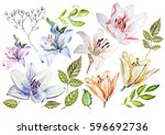 watercolor set with lily... | Shutterstock . vector #596692736