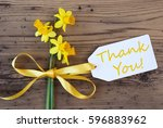 yellow spring narcissus  label  ... | Shutterstock . vector #596883962