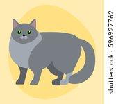cat breed siberian cute pet... | Shutterstock .eps vector #596927762