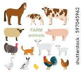 a large set of animals and... | Shutterstock .eps vector #597045962