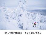 Crown Snow Load Landscape...
