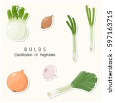 vegetables classification in... | Shutterstock .eps vector #597163715