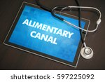 Small photo of Alimentary canal (gastrointestinal disease related) diagnosis medical concept on tablet screen with stethoscope.