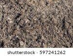stone texture closeup   Shutterstock . vector #597241262