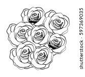 silhouette roses plants icon ... | Shutterstock .eps vector #597369035