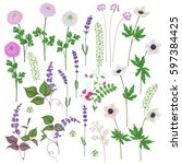 pink and lilac flowers set.... | Shutterstock .eps vector #597384425