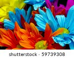 Colorful Flowers Against A...