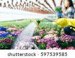 Close Up Of Woman Gardener...