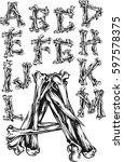 bones alphabet | Shutterstock .eps vector #597578375