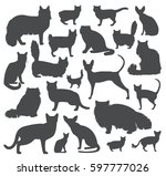 cat breeds icon set flat style. ... | Shutterstock .eps vector #597777026