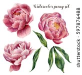 watercolor peony set. vintage...   Shutterstock . vector #597876488