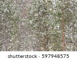 abstract background of snow... | Shutterstock . vector #597948575