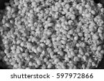Small photo of aaaa?Backgrounds Black and white photo ants eggs on a black sieve.