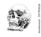 realistic skull vector design... | Shutterstock .eps vector #597993026
