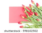Spring Tulip Flowers And Red...