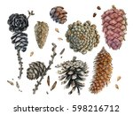 Watercolor Hand Painted Cones....