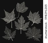 set leaves maple on black.... | Shutterstock .eps vector #598291205