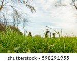 spring training | Shutterstock . vector #598291955