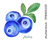 watercolor blueberry. hand... | Shutterstock . vector #598403105
