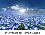nemophila  flower field and... | Shutterstock . vector #598593065